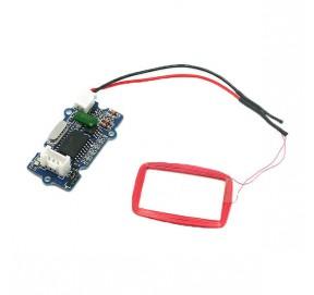 Lecteur RFID125 kHz 113020002