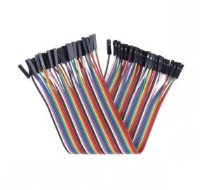Nappe de 40 câbles 20 cm de connexion F/F BBJ12